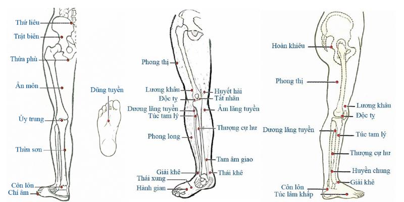 Các huyệt ở cùng chân