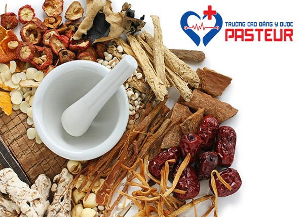 Trong Đông Y có rất nhiều vị thuốc thuộc các nhóm khác nhau
